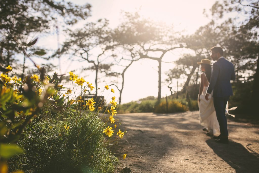 Pre-Wedding Torrey Pines Portrait Session